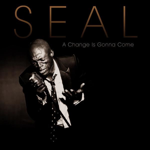 Seal A Change Is Gonna Come