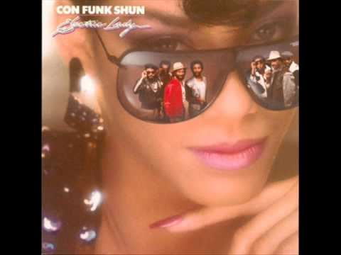 confunkshun_electric lady