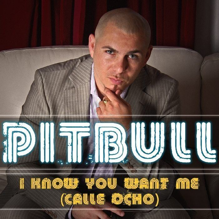 Pitbull_i_know_you_want_me cover
