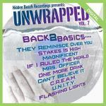 Hidden Beach Unwrapped Vol. 7 Back 2 Basics
