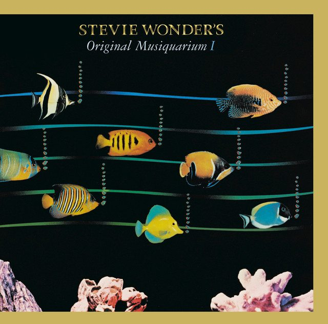 Stevie Wonder That Girl