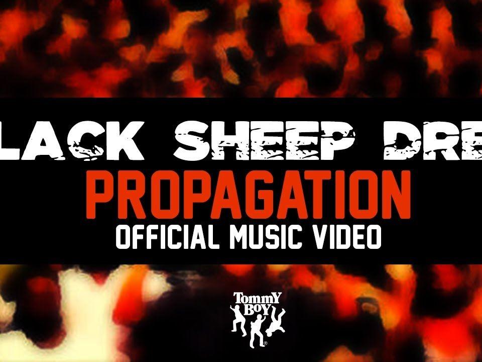 blacksheepdres-propagation