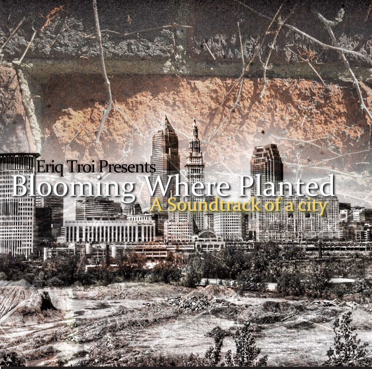 Eriq Troi Blooming Where Planted LP Cover