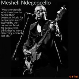 Meshell Ndegeoello - What is your definition of Grown Folks Music?
