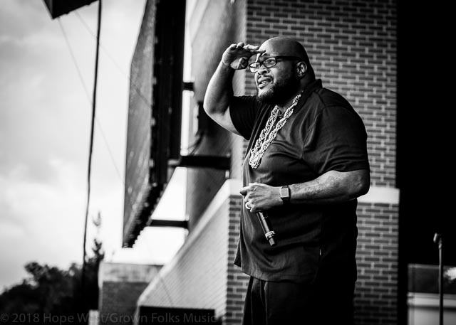 Chubb Rock looking over the crowd at the Old School Hip Hop Fest