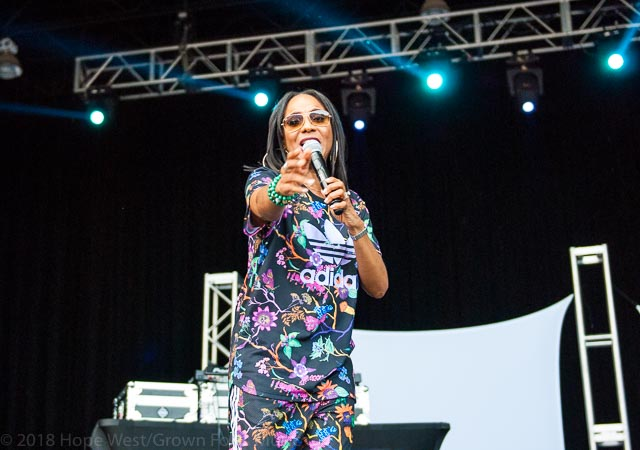 MC Lyte moves the crowd at the Old School Hip Hop Fest