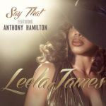 "New Music: Leela James feat. Anthony Hamilton – ""Say That"""